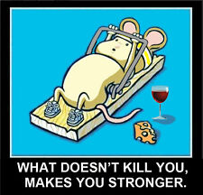 MOUSE WORKING OUT IN MOUSETRAP WHAT DOESN'T KILL YOU MAKES YOU STRONGER MAGNET
