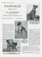 BOXER DOG OUR DOGS 1951 DOG BREED KENNEL ADVERT PRINT PAGE PANFIELD KENNEL