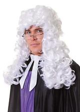 Fancy Dress Wig Court Judge / Barrister long curly
