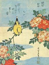 PAINTING JAPANESE BIRD FLOWERS FLORAL ART POSTER PRINT LV2607