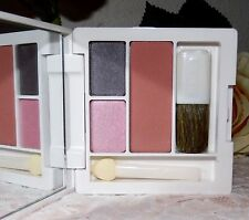 Clinique All about shadow duo/powder blusher palet new