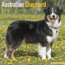 Calendrier 2016 - BERGER AUSTRALIEN