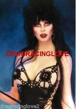 "Cassandra Peterson ""Elvira"" ""Mistress of the Dark"" SEXY"" ""Pin-Up"" PHOTO! #(4b)"