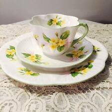 "GORGEOUS VTG ""SHELLEY"" DAINTY TRIO CUP SAUCER & CAKE PLATE ~PRIMROSE~"