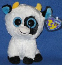 TY BEANIE BOOS BOO'S - DAISY the COW - MINT with MINT TAGS