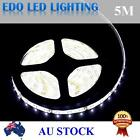 Waterproof 5M 3528 300 LEDS Cool warm White DC 12V SMD LED Strips Strip Light