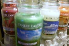SET OF 9 Yankee Candles   ASSORTED   Please Read Description