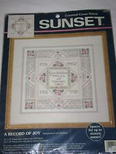 Sunset 1996 A RECORD OF JOY Counted Cross Stitch Kit 13617 Grandchildren RARE