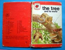 The Tree And Its World vintage Ladybird book nature ash beech cedar lime pine