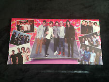 Canvas Print of One Direction (1D) with Their Original Lineup PINK Background