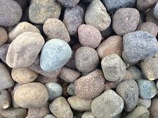 Kiesel zierpflanzen porphyr 60/80mm 25 kg steine farbig gartendekorationen