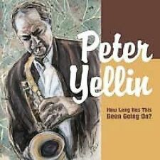 FREE US SH (int'l sh=$0-$3) ~LikeNew CD Yellin, Peter: How Long Has This Been Go