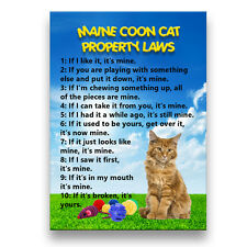 MAINE COON CAT Property Laws Fridge Magnet No 2 Funny