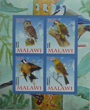 Birds / Owl Woodpecker Goldfinch Yellowhammer m/s Malawi 2008 MNH IMPERF #F211