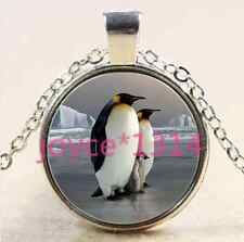 Vintage Penguin Cabochon Tibetan silver Glass Chain Pendant Necklace*XP-2601