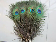 5pcs beautiful natural peacock feather eyes Natural color Select 10-12 inches DD