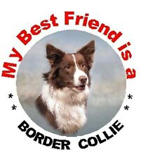 2 Border Collie Dog Car Stickers MBF 4 - By Starprint - Auto combined postage