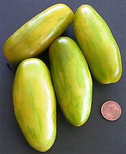 20 graines de TOMATE SAUCISSE VERTE Tomato seeds semillas