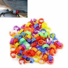 100X Chicken Hen Pigeon Poultry Dove Bird Chicks Duck Parrot Leg Clip Rings Band