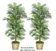 Two 6' Areca Artificial Palm Trees Silk Plants New 116