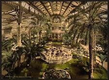 Nice Jardin d'hiver intérieure a4 papier photo