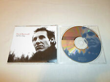Tested David Baerwald All for You CD Single Promo Edited/LP Version Country Rock