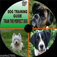 LEARN TO TRAIN YOUR DOG GUIDE ON VIDEO DVD SIMPLE TO FOLLOW TRAINING TUITION NEW