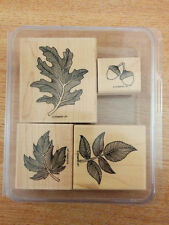 Autumn Splendor Retired Stampin' Up! Wood Mount Rubber Stamp Set