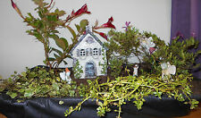 Miniature Garden Fairy Gnome Ivy House Indoors or Outdoors Door Opens Charming!
