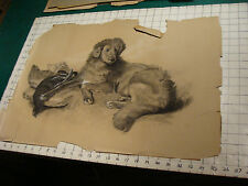 original 1891 Signed drawing of DOG and the Bird it got, on paper, torn, SO GOOD