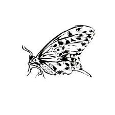 resting BUTTERFLY unmounted rubber stamp #9
