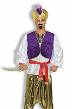 Adult Desert Prince Shirt and Vest Combo Aladdin Genie Shirt Adult Size Standard