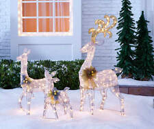 Light-Up Silver Deer, 3 Piece Outdoor Christmas Decorations