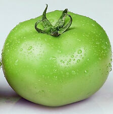 Green Tomato Seeds 30 Seeds Emerald Lycopersicon Esculentum Fruit Plants B043