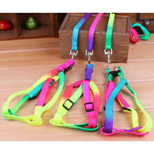 Adjustable Pet Dog Puppy Cat Rabbit Kitten Nylon Harness Collar Leash Lead strap