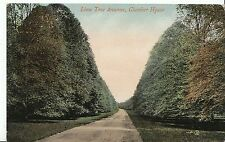 Nottinghamshire Postcard - Lime Tree Avenue - Clumber House   7783