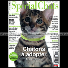 SPECIAL CHATS N°22-b ★ RACE : BLEU RUSSE ★ NORA GRUSS ALIMENTATION CHATON 2013
