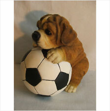 PUPPY PLAYING WITH A FOOTBALL . LATEX MOULD/MOULDS/MOLD
