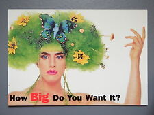R&L Modern Postcard: Digital Exchange Advertising promo, Butterfly Hair Model