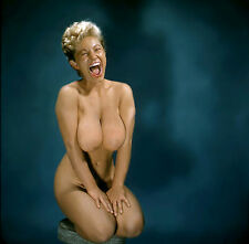 1960s Nude Pinup Virginia Bell Big smile & Big breasts 8 x 8 Photograph