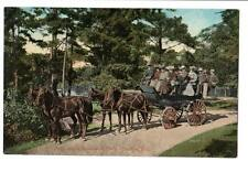 "Vintage Postcard """"Tally Ho"" in Beaconhill Park, Victoria, B. C."" tourists"