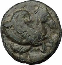 Skepsis in Troas 350BC Ancient Greek Coin Pegasus winged horse Fir tree  i31799