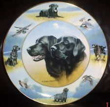 Lovely Royal Doulton THE SPORTING LIFE Black Labrador 8 Inch Plate