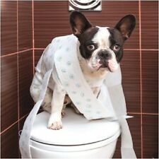 French Bulldog Birthday Greeting Card Naughty Frenchie Toilet Paper Dog Lovers