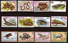 Les reptiles de tous pays : crocodiles,tortues,serpents,iguane.... 43T6