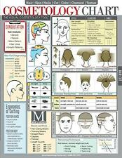 Laminated Cosmetology Chart-Quick-Reference Guide for Hair Stylists, Students &