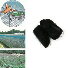 Black 3mx6m Anti Bird Net Mesh For Fruit Crop Plant Tree Bird-Preventing Netting