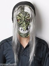 Ugly Witch Ghost White Hair Green Face  Costume Halloween Party Mask