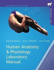 Human Anatomy and Physiology Marieb 11th Ed Laboratory Manual Cat Version Lab