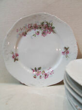 7 anciennes assiettes en porcelaine decor floral